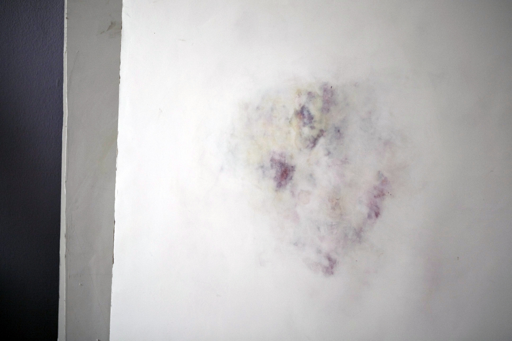 Untitled, Bruise Study  . acrylic, joint compound, drywall. 2015. These bruise studies   are humble reminders of our body's physicality. Reverence is given to these ephemeral markings by enlarging and embedding them in a building material such as drywall.
