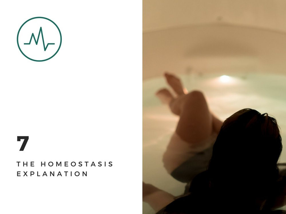 Floatation Therapy The Homeostasis Explanationjpg