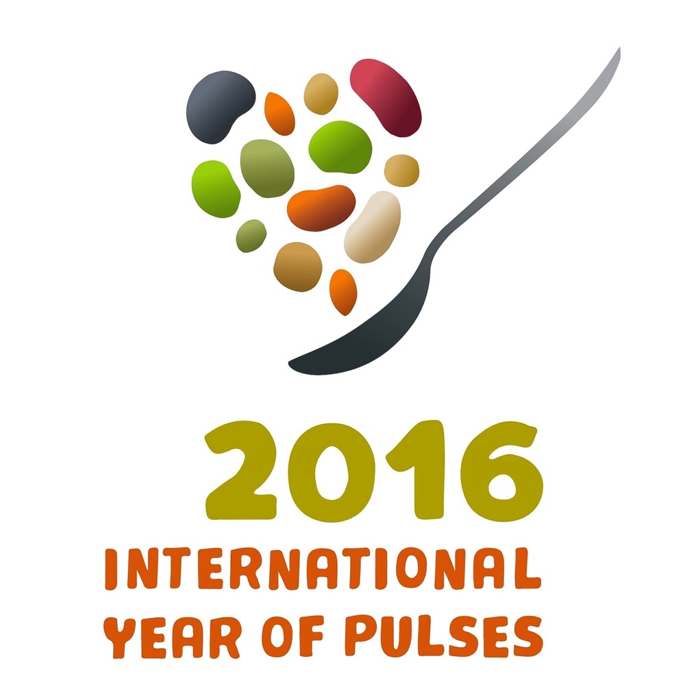 IMAGE SOURCE: http://www.fao.org/pulses-2016/communications-toolkit/download-iyp-logo/en/