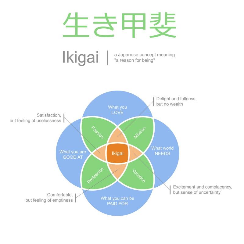 A framework for Ikigai