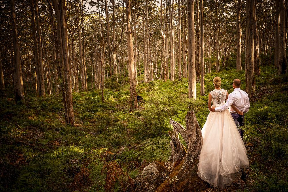 boranup forest wedding