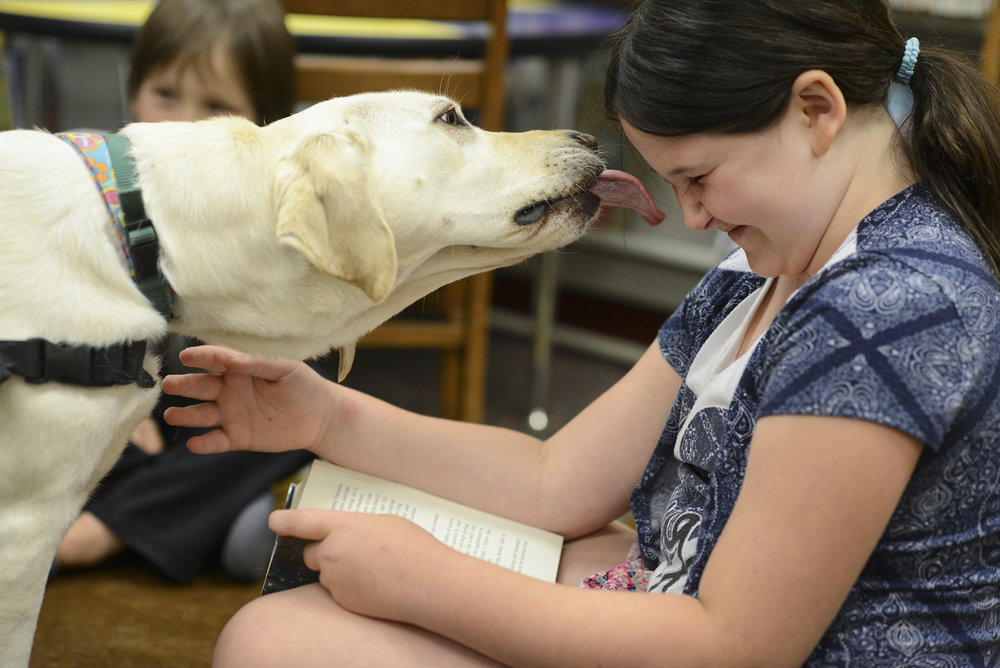 "Cora McGill, 9, receives a kiss from Limon, a therapy dog, while reading aloud ""The Time of the Fireflies"" at the Ridgefield Community Library, Tuesday July 19, 2016. (Ariane Kunze/The Columbian)"