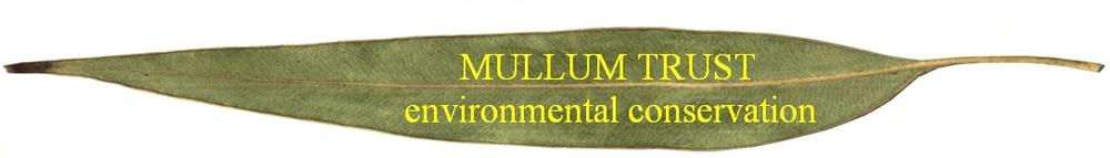 Mullum Trust Leaf.jpg