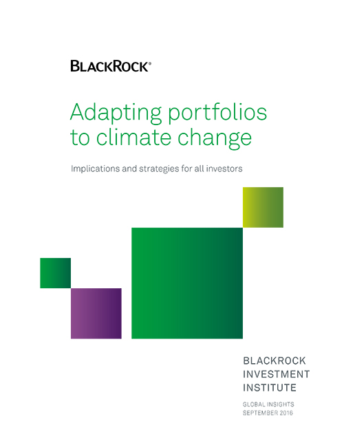 BlackRock Adapting portfolios to climate change