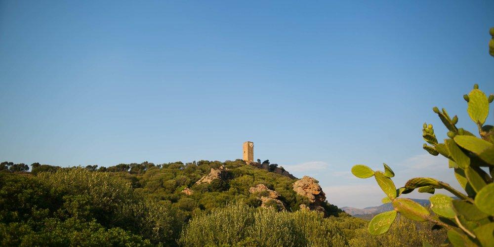 Sardegna2016-8400.jpg