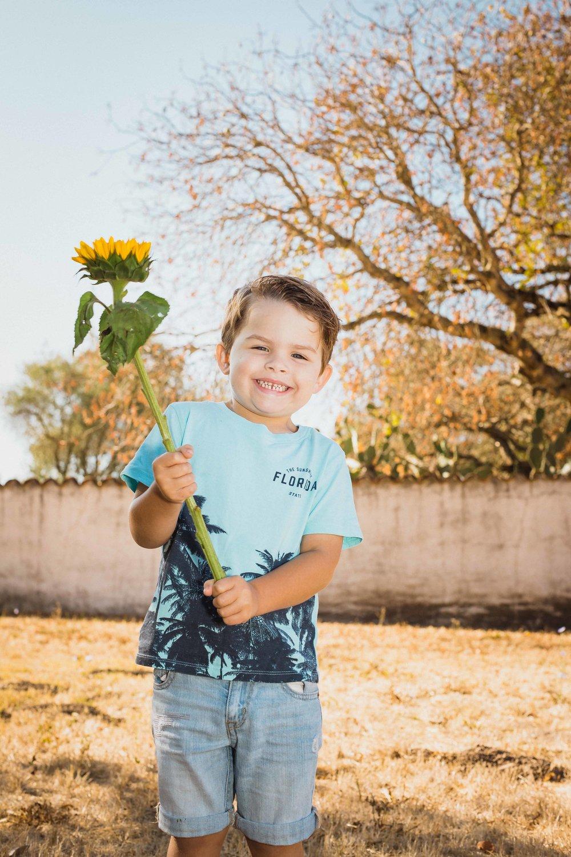 ksdensunflower-4.jpg