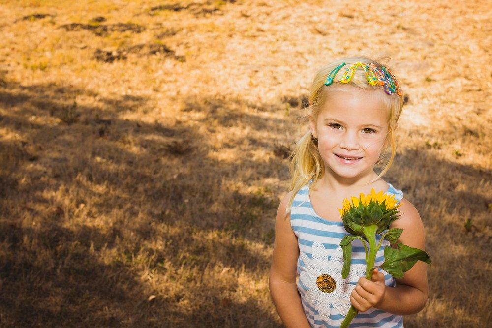 paisleysunflower-2.jpg