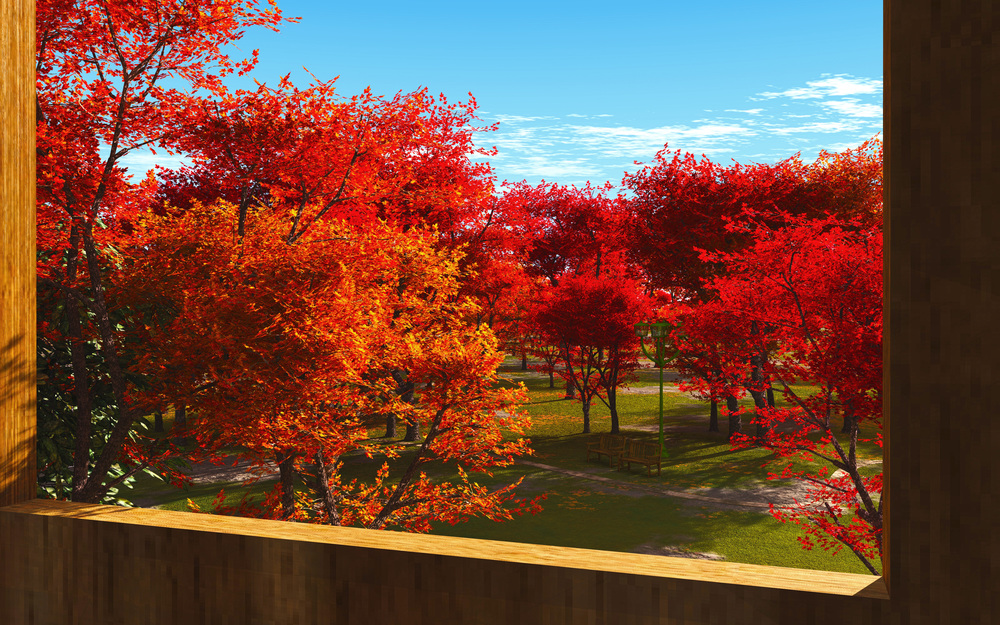 Fall-Park1.jpg