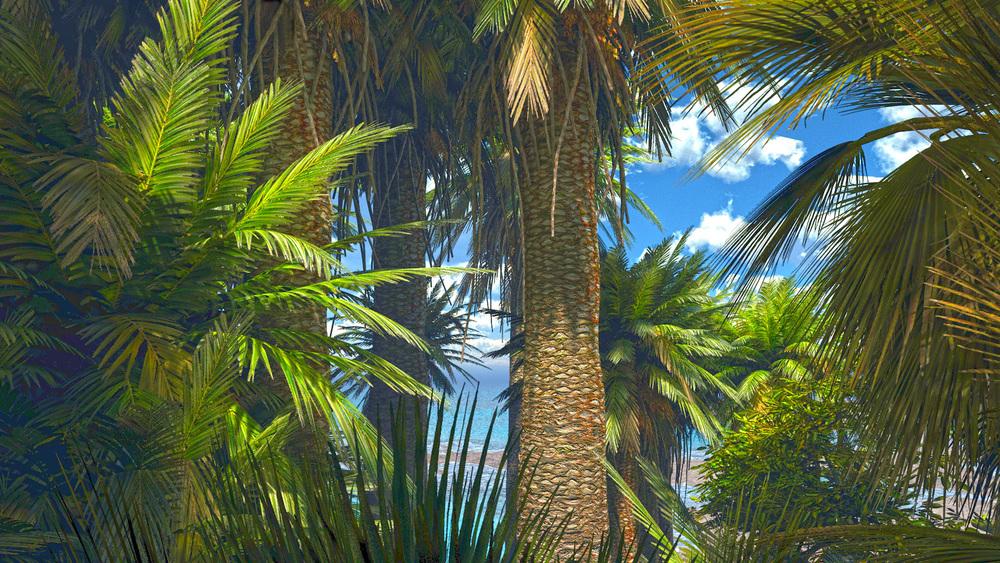 Tropical-Trees1.jpg