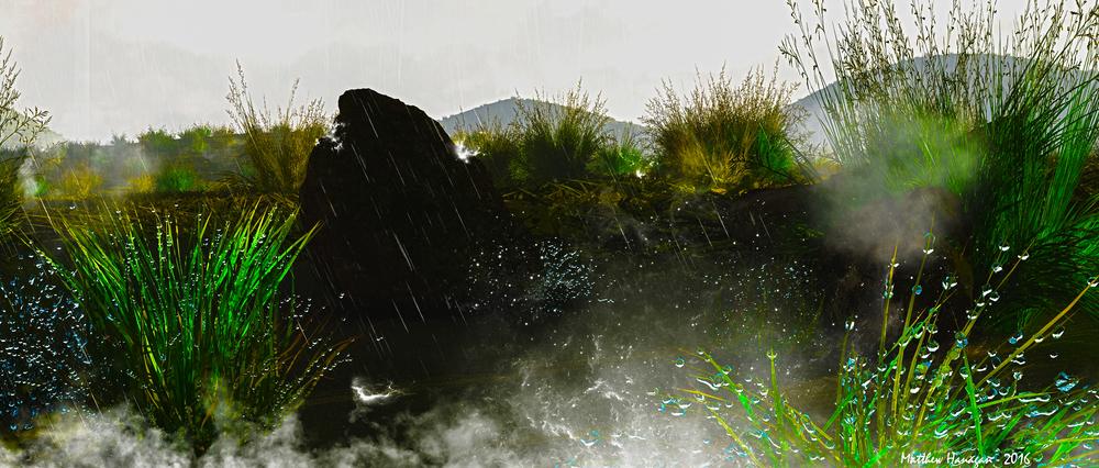 Wet-Grass-FINAL.jpg