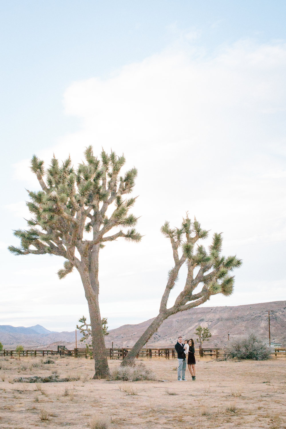 Palm Springs Family Mary Graham Photography-19.jpg