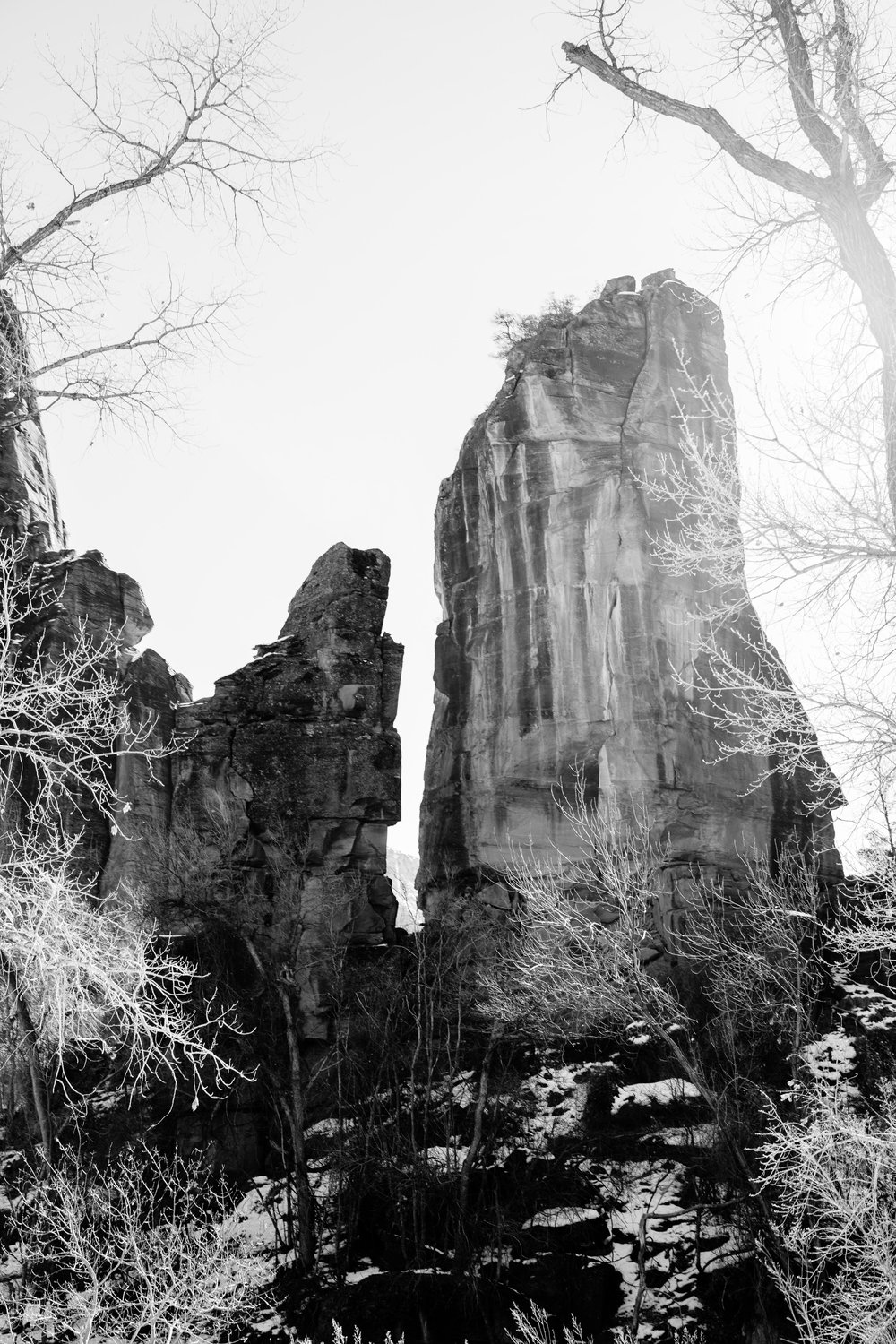 365 February Zion National Park-2.JPG