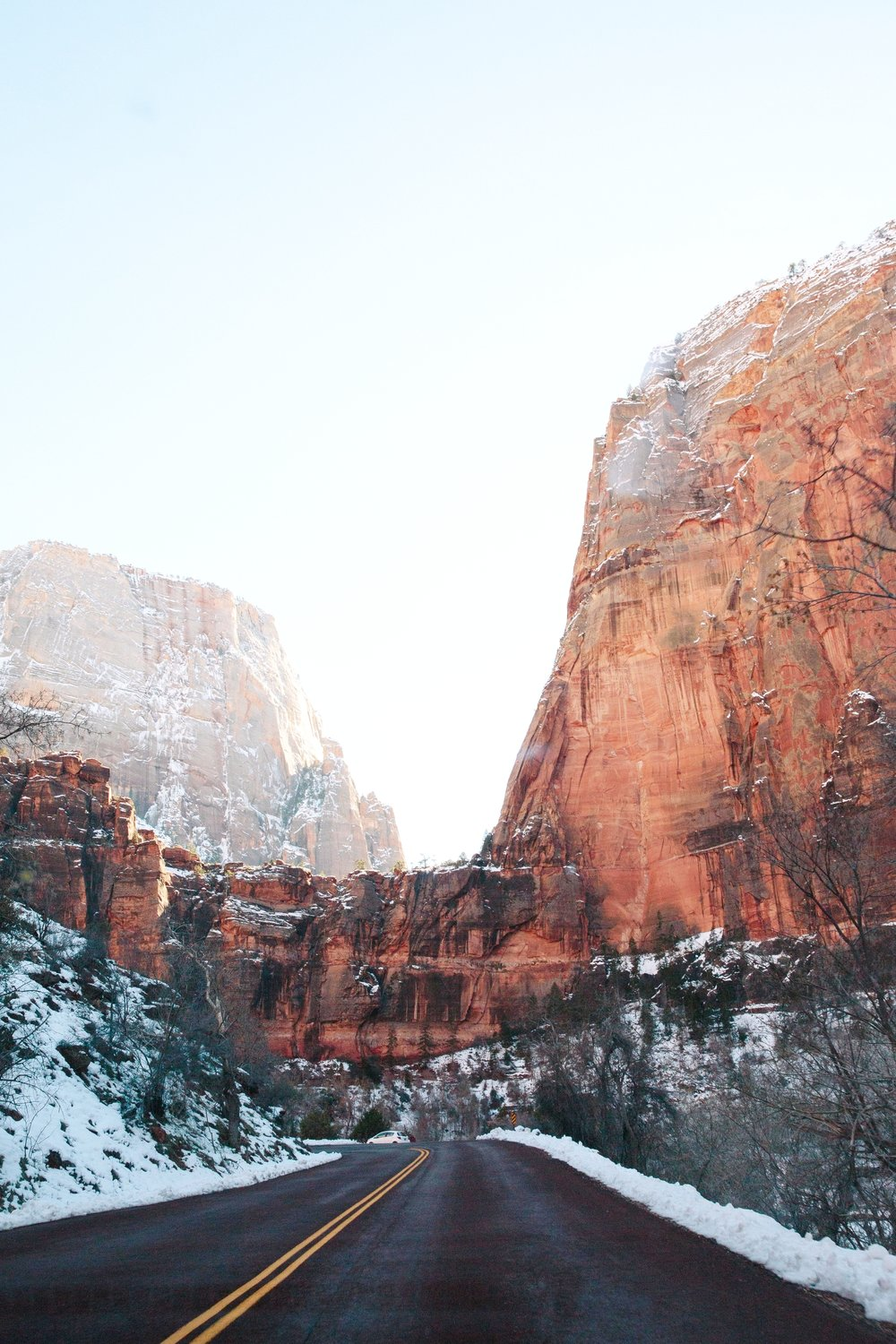 365 February Zion National Park-3.JPG