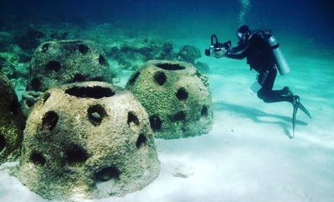 Eternal Reefs es una empresa estadounidense que ofrece la posibilidad de que las cenizas del ser querido puedan descansar en un arrecife totalmente natural. Para ello los restos cremados son mezclados en el concreto para crear una perla. Luego, la familia puede personalizar la parte superior del arrecife con mensajes, huellas de manos e inclusive añadir recuerdos que no sean perjudiciales para el medio ambiente.  #mira #piensa #opina #comparte #muerte #death #nature #naturaleza #arrecife