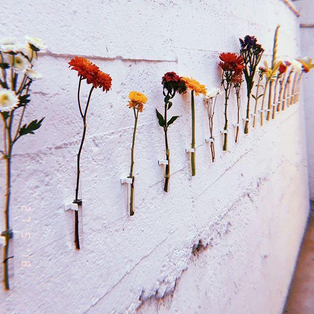 """#florparamifuneral es una instalación realizada para la III version del Encuentro Interdisciplinario sobre la muerte @eim________ cuyo tema central es """"La Muerte en los nuevos medios"""" Esta obra es una invitación a observar, elegir y compartir en las redes que flor te gustaría recibir en tu funeral, una invitación a pensar e integrar la propia muerte."""
