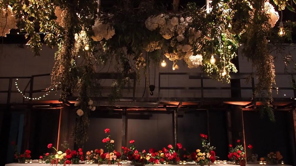 daniel and eleanor wedding videography sydney