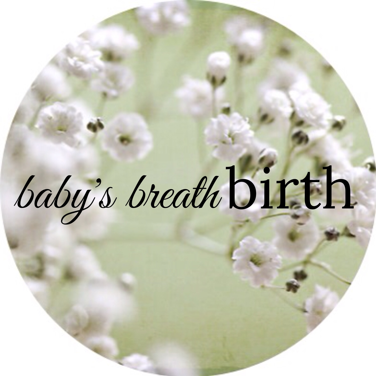 Baby's Breath Birth