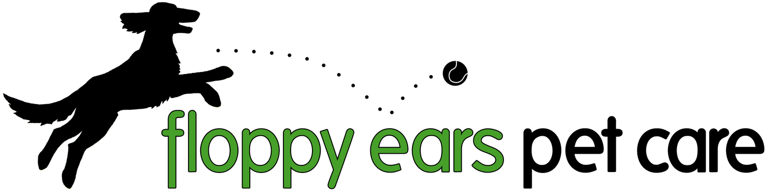 Floppy Ears Pet Care