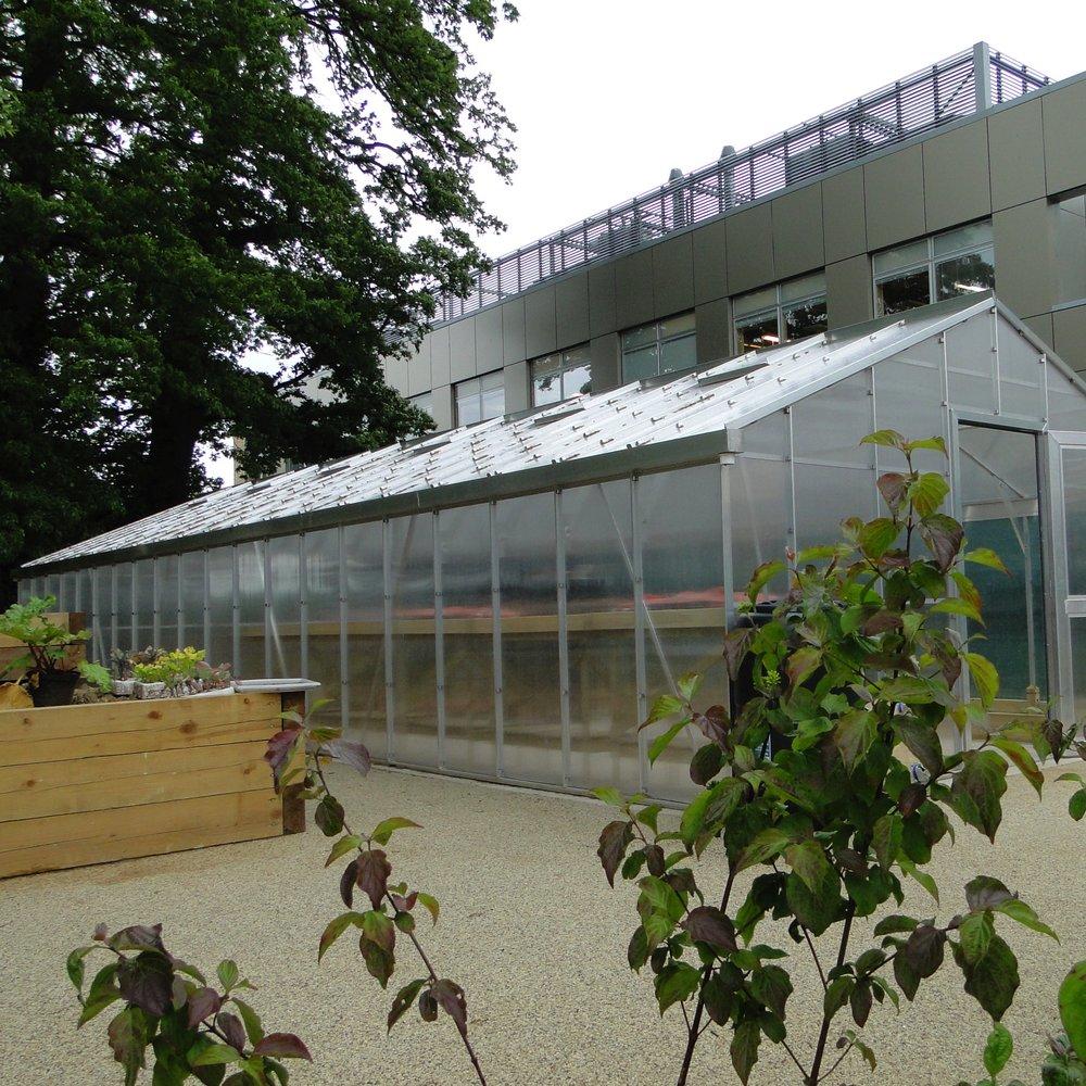 STC Merton Complex Needs Centre
