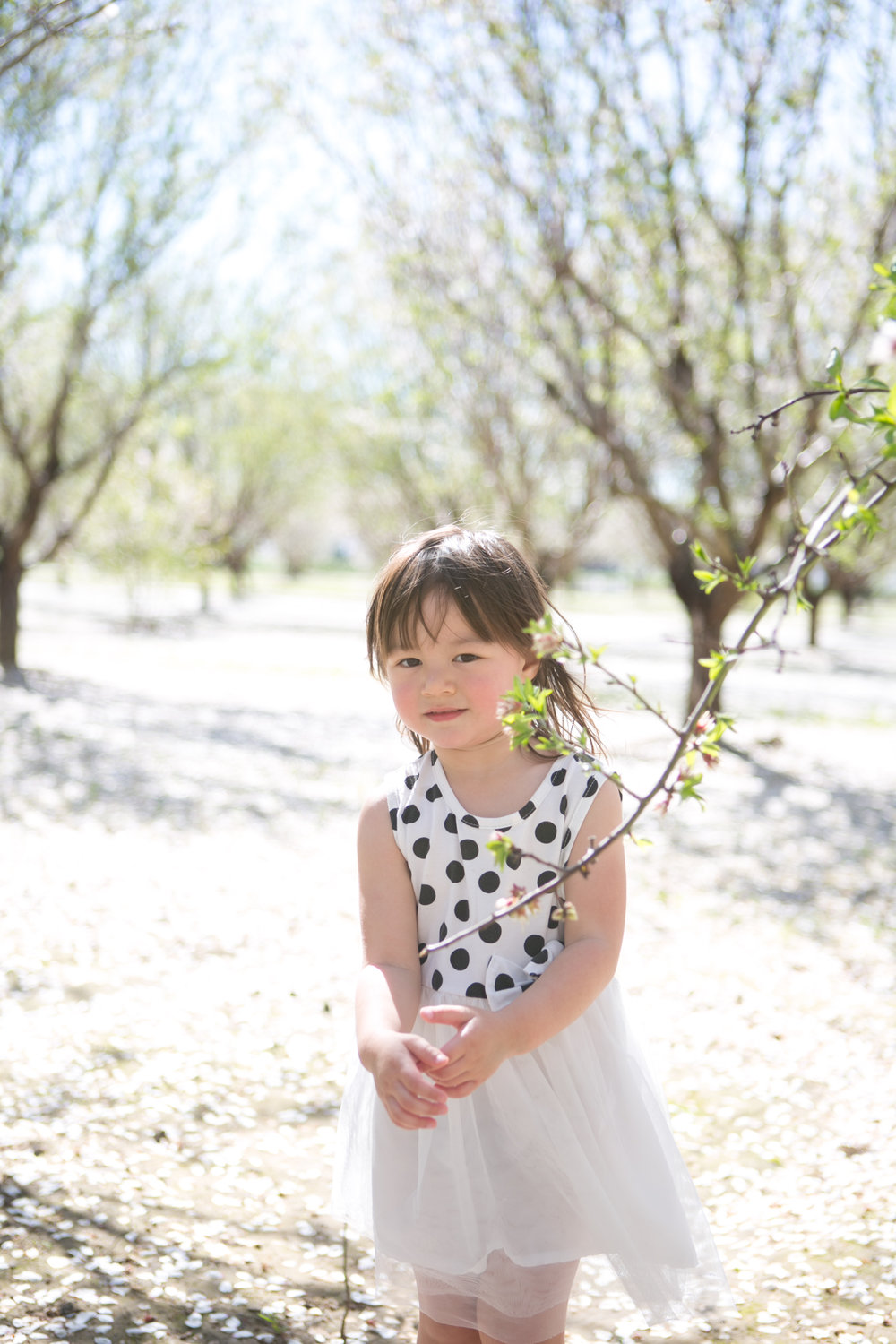 Roseville Family Photographer Lifestyle Family Photography - Michelle Chang Photography