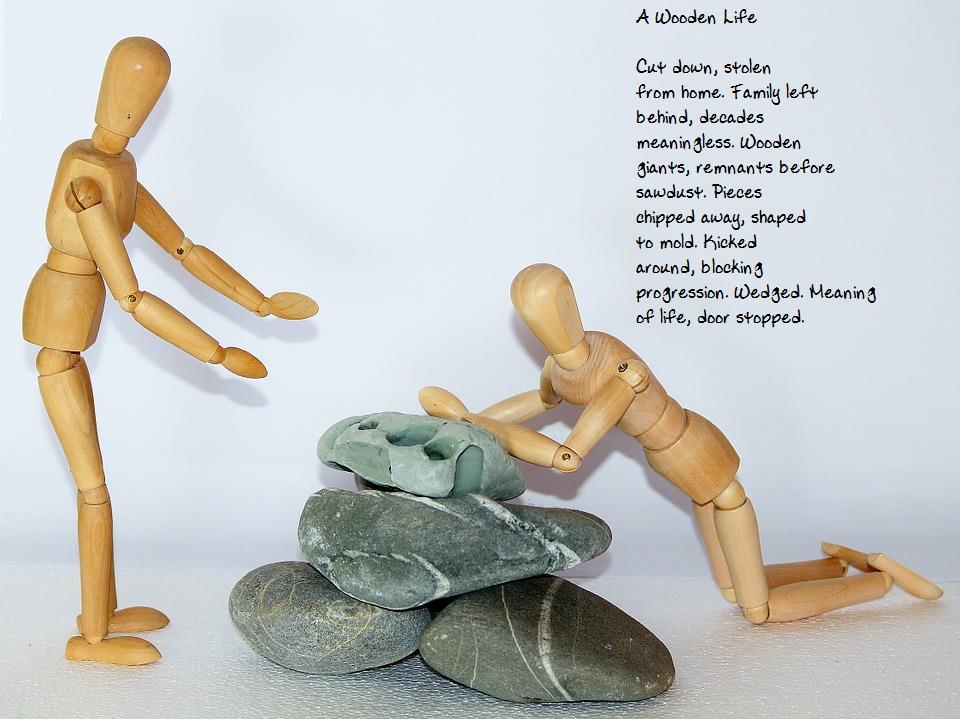 Poem by Sarah Fordyce, Image macro by Jonathan Steinklein