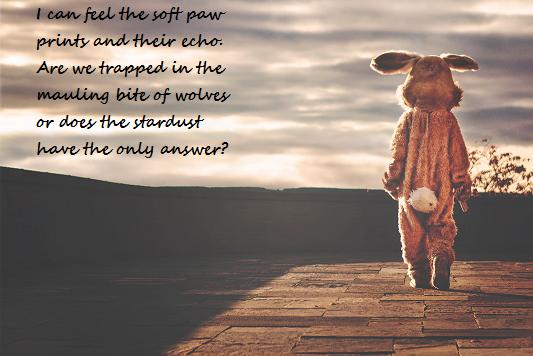 Words by Steven Warren, image macro by Jonathan Steinklein