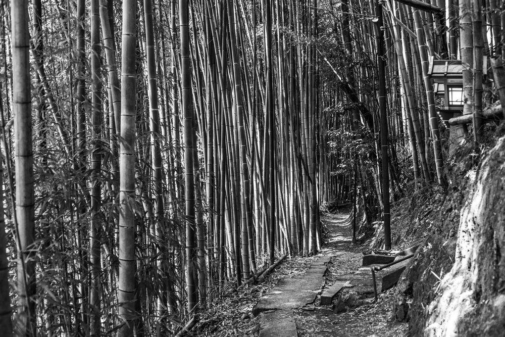 japan-kyoto-2.jpg