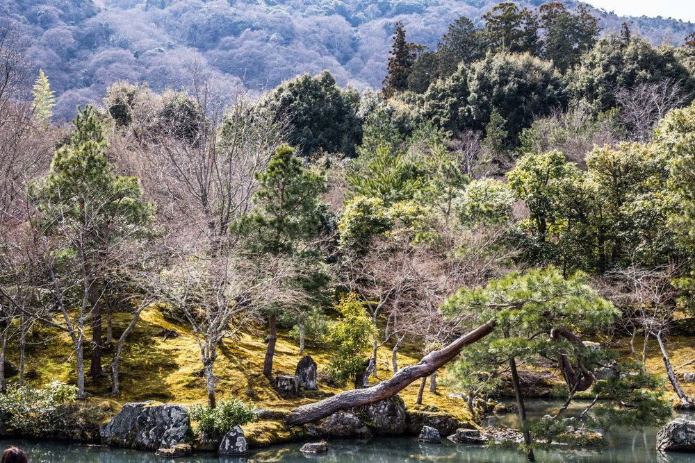 japan-kyoto-8.jpg