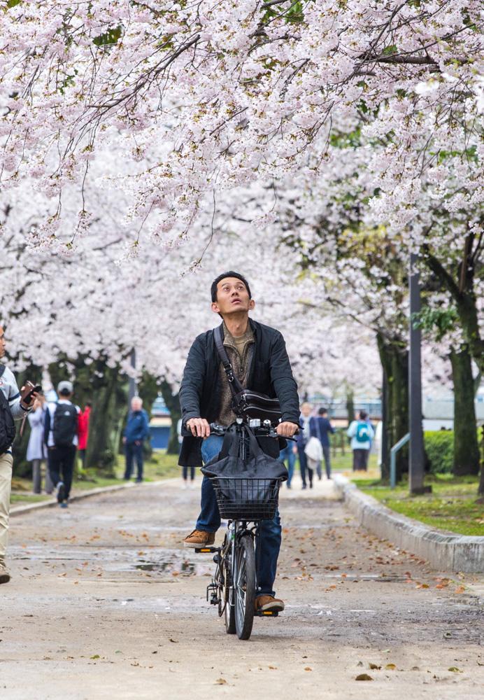 japan-hiroshima-3.jpg