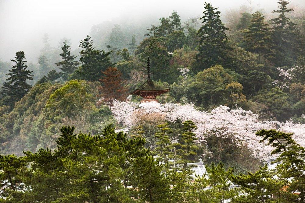 japan-hiroshima-17.jpg