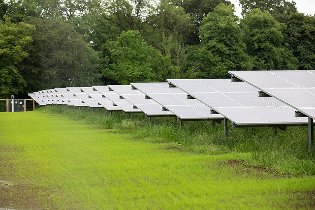 The solar farm was switched on in March.