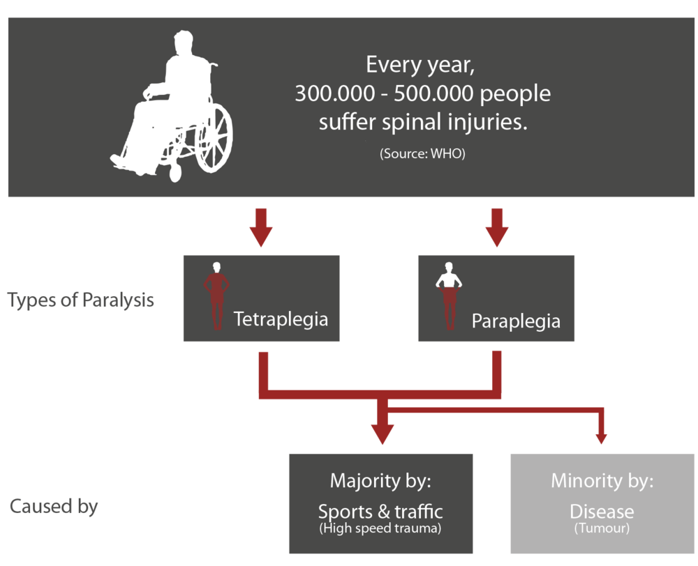 Statistics on spinal cord injuries -