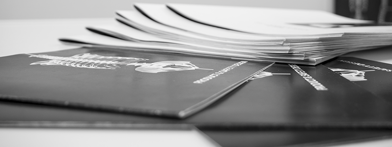Folder Package. -