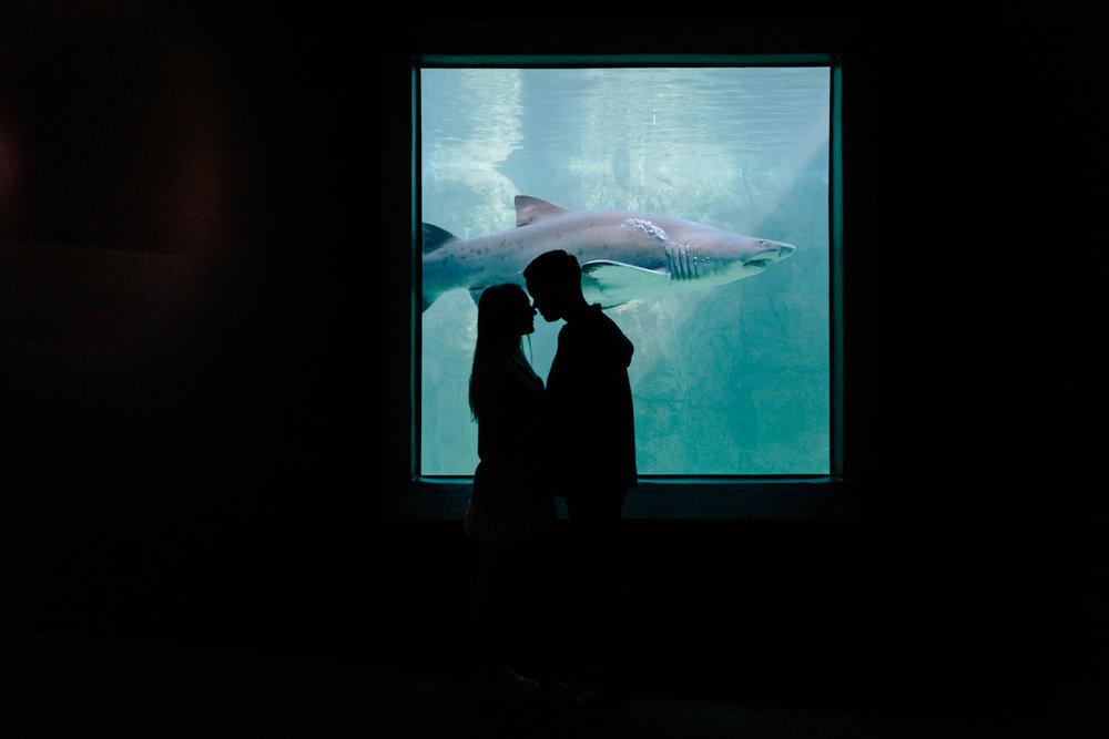 EMILY&PETE_AQUARIUM -3714.JPG