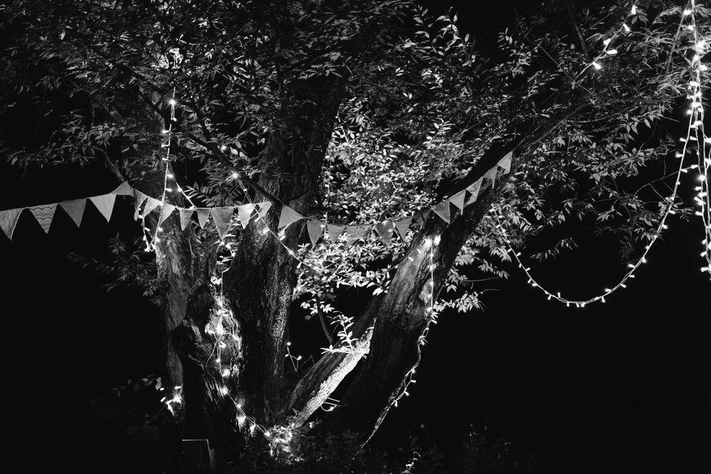 KOAPHOTOGRAPHY_CELICE+BERNIE-8578-2.JPG