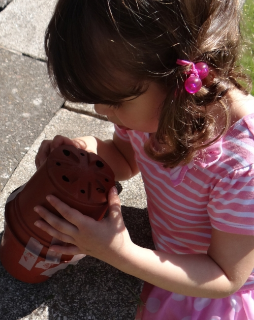 Making a 'home' for a snail