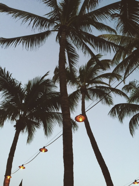 Swaying Palms and Strings of Lights
