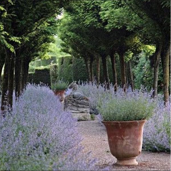 Chez Pluie Provence