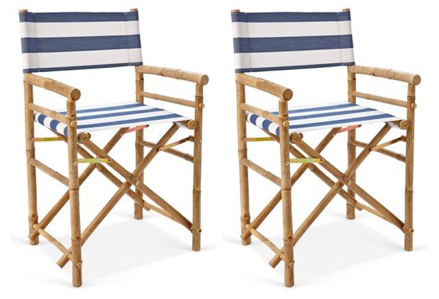 Product_AAV10008_Image_1.jpg