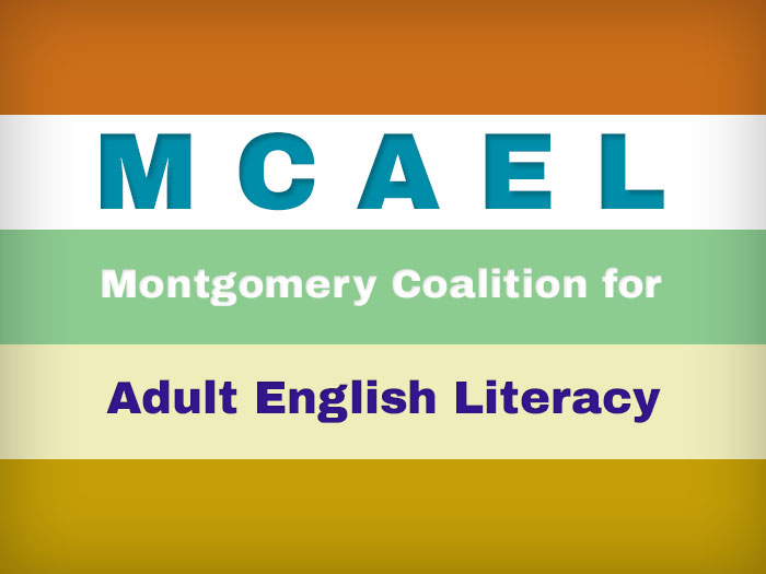 Montgomery Coalition for Adult English Literacy (MCAEL) engaged Sharp Insight to clean, code, analyze and present data from four fiscal years.   The data represent thousands of individual students and hundreds of English language classes taught in Montgomery County, Maryland, by MCAEL's grant-funded organizations.