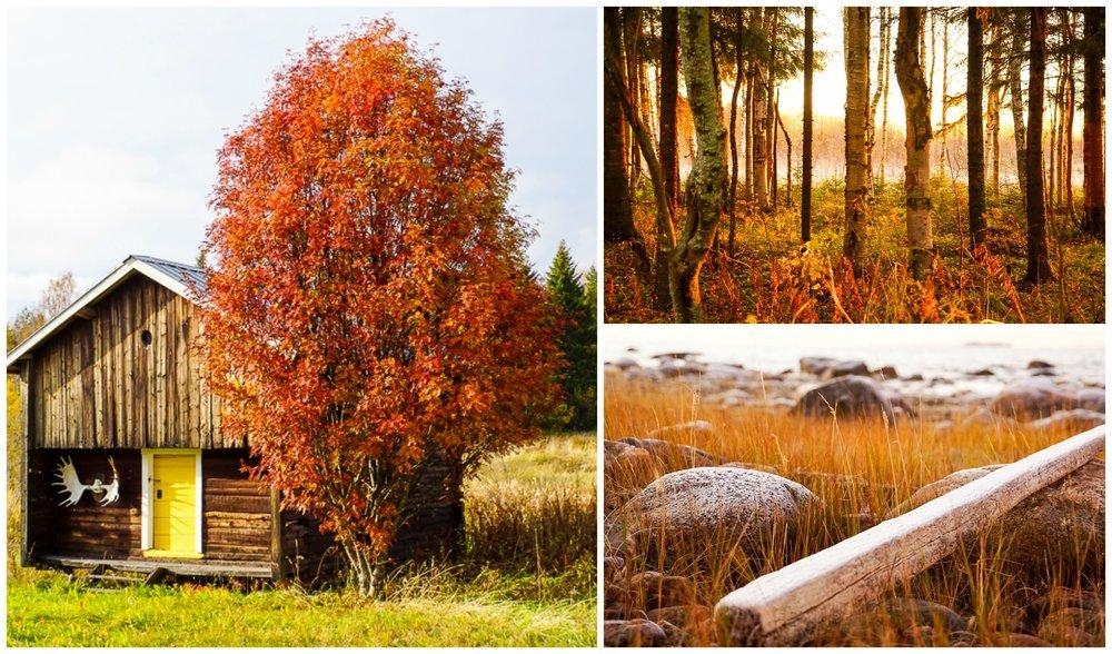 Magiska Norrbotten