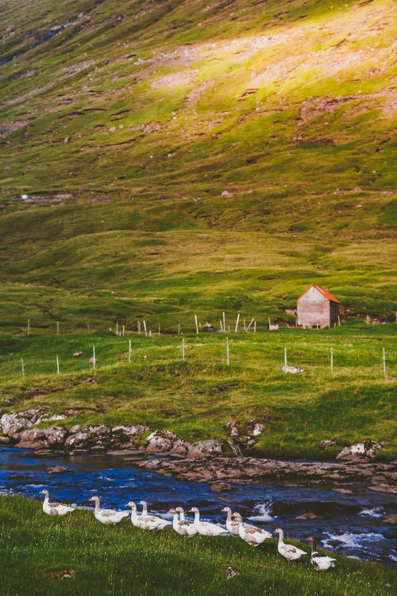 Mitt på dagen på Färöarna. Sigma 70-200 mm, f/2.8. 91mm. 1/1000 sek, f/3.5, iso100.