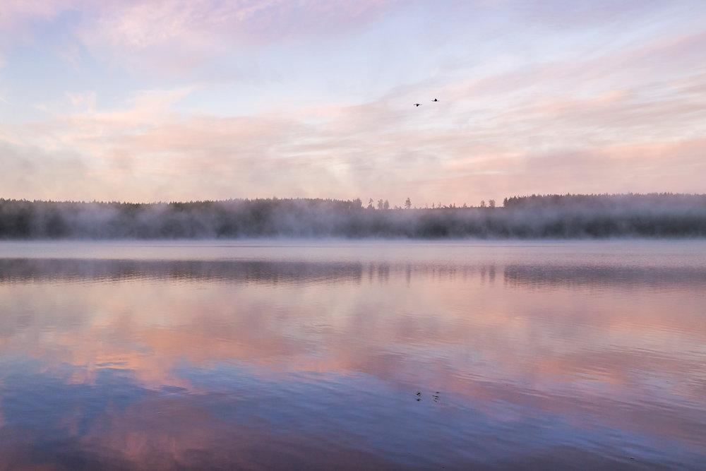 En stillsam soluppgång över en vacker sjö djupt i Smålands skogar.