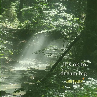 OK to dream big.jpeg