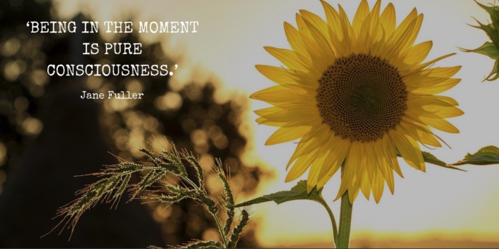 being-in-the-moment-is-pure-consciousness