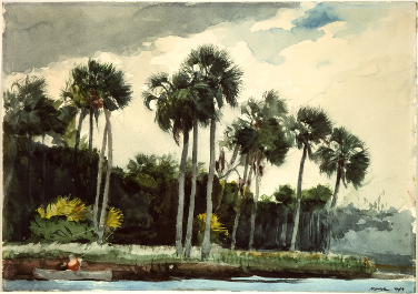 Red_Shirt_Homosassa_Florida_by_Winslow_Homer_1904.png
