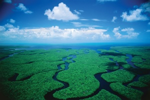 everglades_national_park_florida-wallpaper.jpg