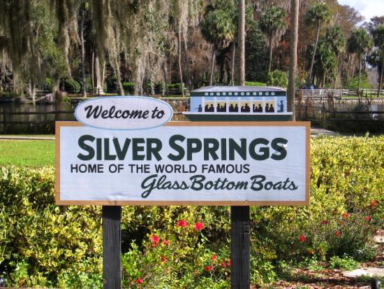silver-springs-state.jpg
