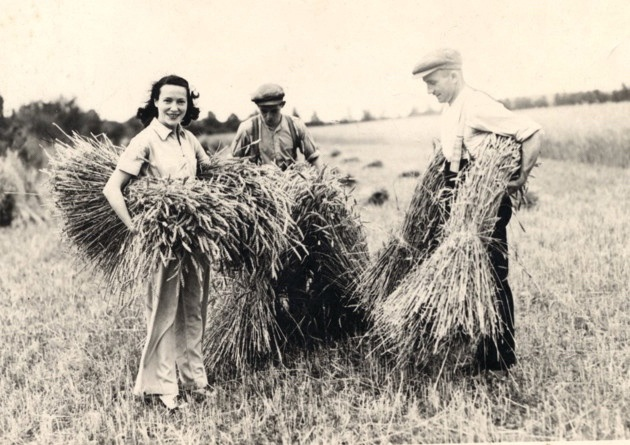 Adele doing her bit as a Land Girl on the Chatsworth Estate.
