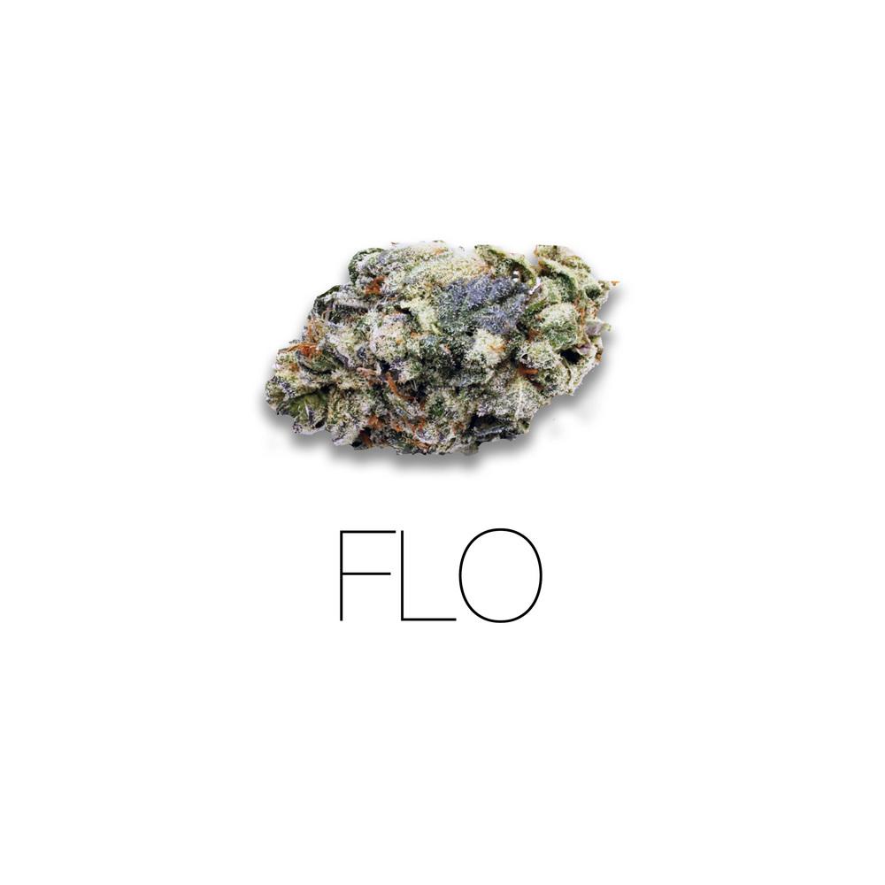 FLO.jpg